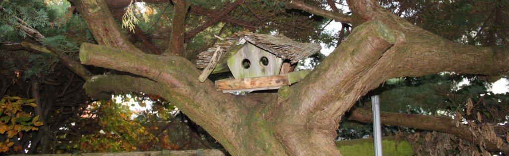 vogelhaus-i.jpg